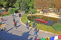 Gernot Singer - Car Park